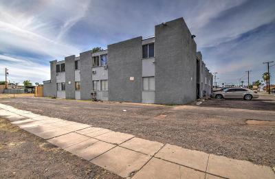 Phoenix Multi Family Home For Sale: 834 13th Avenue