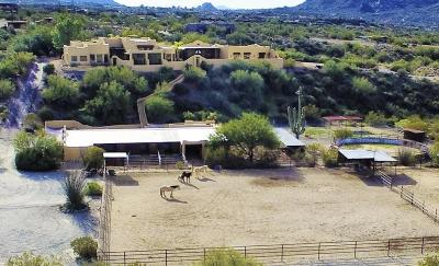 Cave Creek Single Family Home For Sale: 39845 N 74th Street
