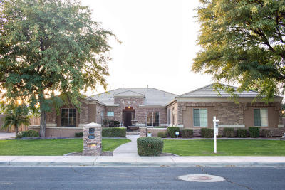 Queen Creek Single Family Home For Sale: 23510 S 201st Way