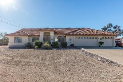 Maricopa County, Pinal County Single Family Home For Sale: 615 E Lavitt Lane