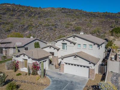 Phoenix AZ Single Family Home For Sale: $525,000