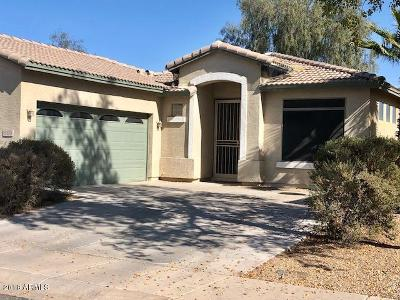 Chandler Single Family Home For Sale: 5175 S Eileen Drive
