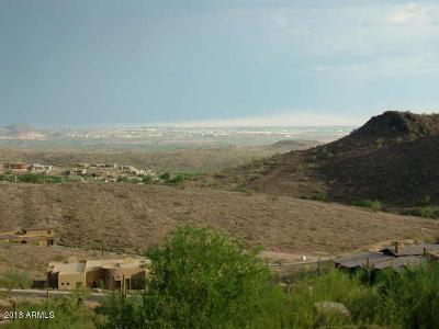 Fountain Hills Residential Lots & Land For Sale: 10904 N Arista Lane