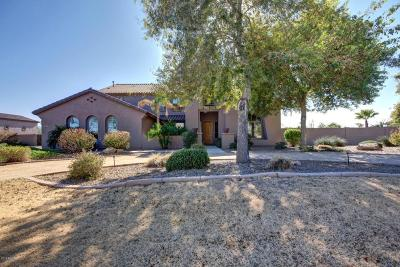 Mountain Gate, Mountain Gate Phase 3 & 4, Mountain Gate Phase 3&4, Mountain Gate/Copper Canyon (Gated) Single Family Home For Sale: 14139 W Christy Drive