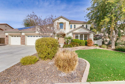 Chandler Single Family Home For Sale: 2760 E Cedar Place