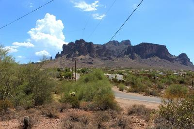Apache Junction Residential Lots & Land For Sale: W Val Vista