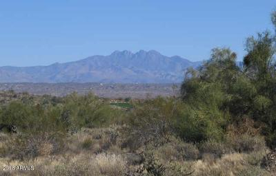 Fountain Hills Residential Lots & Land For Sale: 17315 E Zaharias Drive