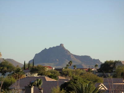 Fountain Hills Residential Lots & Land For Sale: 15012 N Maple Drive