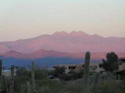 Fountain Hills AZ Residential Lots & Land For Sale: $215,000