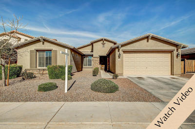 San Tan Valley Single Family Home For Sale: 1258 W Plane Tree Avenue