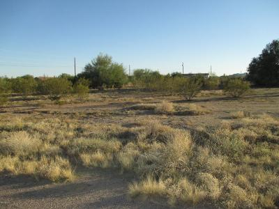 San Tan Valley Residential Lots & Land For Sale: 30226 N Edwards Road