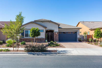 Queen Creek Single Family Home For Sale: 20194 S 192nd Place