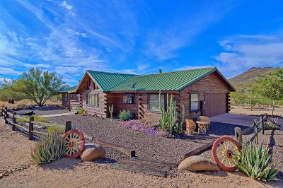 Cave Creek Single Family Home For Sale: 4935 E New River Road