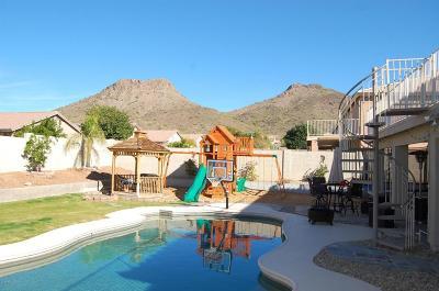 Phoenix AZ Single Family Home For Sale: $390,000