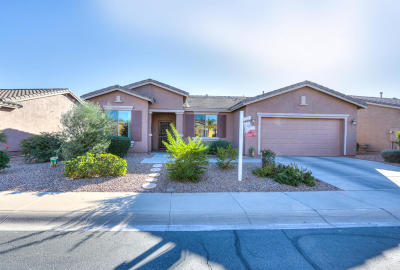 Maricopa Single Family Home For Sale: 42549 W Constellation Drive