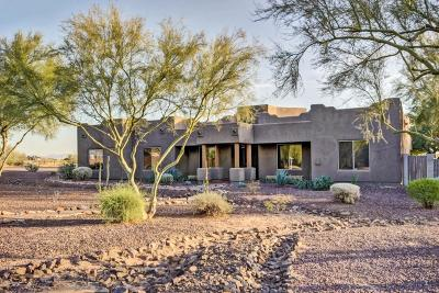 Cave Creek Single Family Home For Sale: 36916 N 28th Street