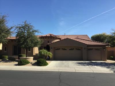 Litchfield Park Single Family Home For Sale: 5625 N 133rd Avenue