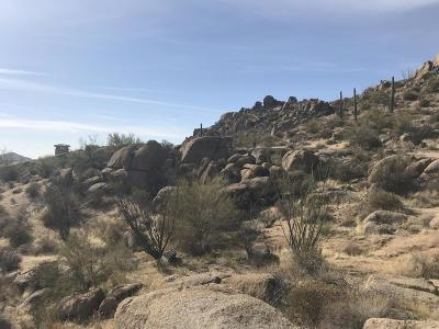 Scottsdale Residential Lots & Land For Sale: 10671 E Hedgehog Place