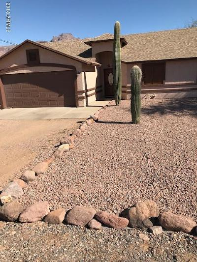 Apache Junction Single Family Home For Sale: 789 N Arroya Road
