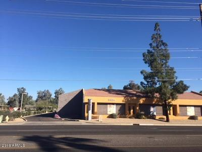 Glendale Commercial For Sale: 5334 W Northern Avenue