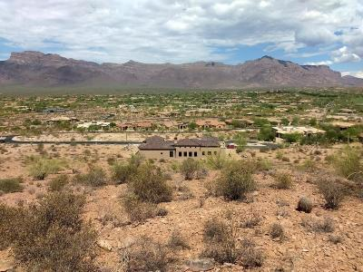 El Mirador At Superstition Mountain, El Mirador Superstition Mountain Single Family Home For Sale: 3882 S Summit Trail