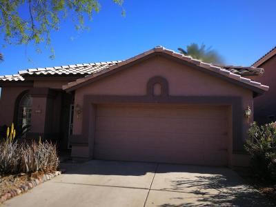 Chandler Single Family Home For Sale: 5141 W Shannon Street