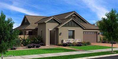 Gilbert Single Family Home For Sale: 4360 E Dwayne Street