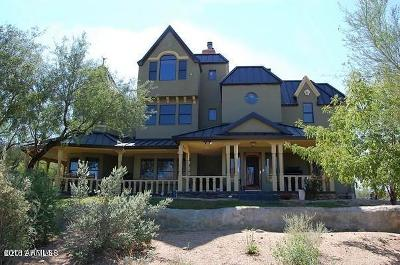 Cave Creek Single Family Home For Sale: 44028 N Spur Cross Road
