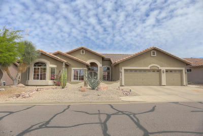 Gold Canyon Single Family Home For Sale: 6367 S Sandtrap Drive
