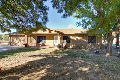 Maricopa County, Pinal County Single Family Home For Sale: 19114 E Hunt Highway