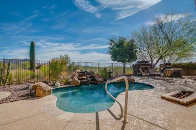 Phoenix Single Family Home For Sale: 41717 N Club Pointe Drive N