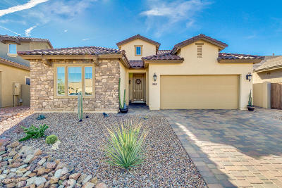 San Tan Valley Single Family Home UCB (Under Contract-Backups): 543 E Red Mesa Trail