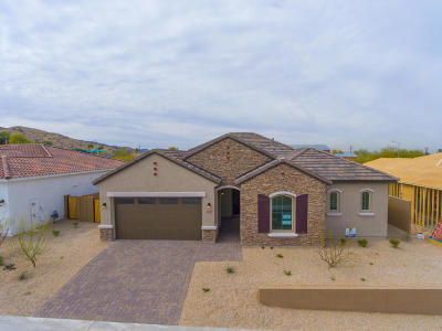 Phoenix Single Family Home For Sale: 7714 S 42nd Way