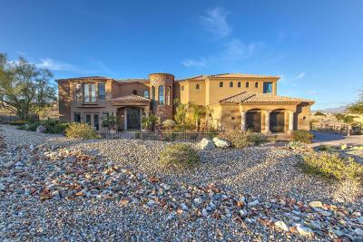 Fountain Hills Single Family Home For Sale: 16550 E Jacklin Drive