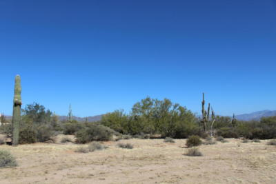 Scottsdale Residential Lots & Land For Sale: 32000 N 164th Street