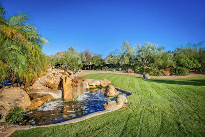 Paradise Valley Residential Lots & Land For Sale: 6239 N Paradise View Drive