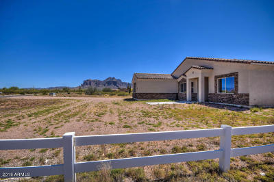 Apache Junction Single Family Home For Sale: 1623 E Hidalgo Street