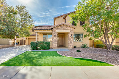 Queen Creek Single Family Home For Sale: 21421 E Lords Way