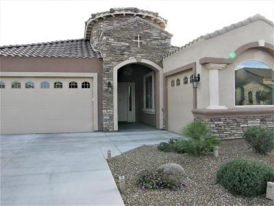 Queen Creek Single Family Home For Sale: 19715 E Raven Drive