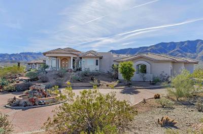 Phoenix Single Family Home For Sale: 9430 S 19th Avenue