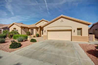 Gilbert Single Family Home For Sale: 4552 E Mia Lane