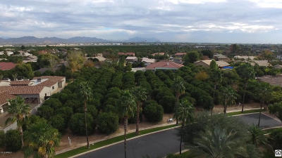 Mesa Residential Lots & Land For Sale: 2109 N Pomelo