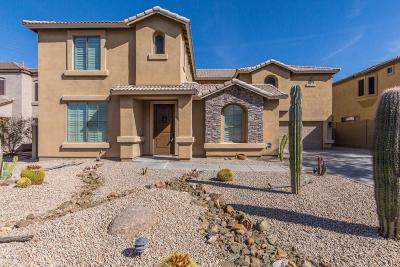 Cave Creek Single Family Home For Sale: 32641 N 42nd Place