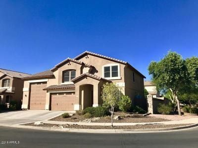 Surprise Single Family Home For Sale: 15924 W Canterbury Drive