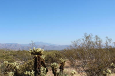 Scottsdale Residential Lots & Land For Sale: 36000 N 140th Street
