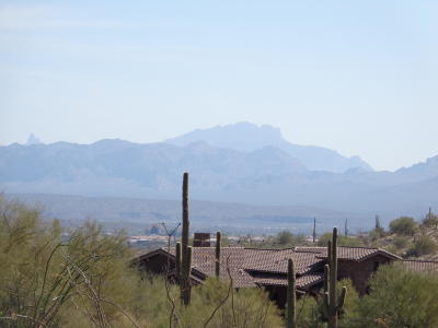 Fountain Hills AZ Residential Lots & Land For Sale: $190,000
