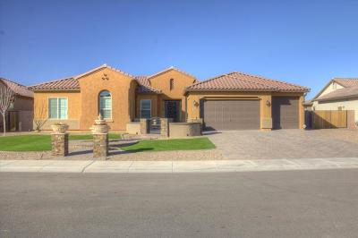 Peoria Single Family Home For Sale: 8038 W Chama Drive