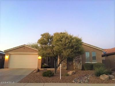 Anthem Single Family Home For Sale: 3320 W Owens Way