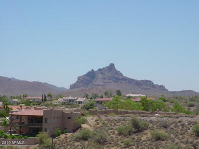 Fountain Hills Residential Lots & Land For Sale: 10808 N Middlecoff Drive