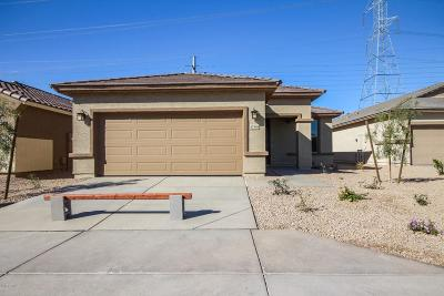 Surprise Single Family Home For Sale: 17348 N 114th Drive